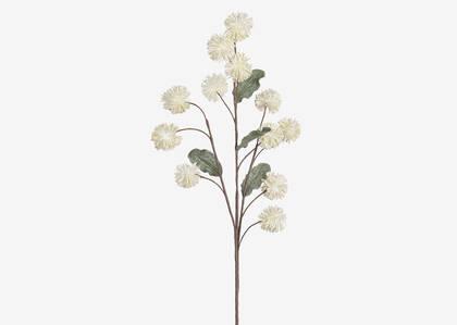 Branche d'alliums Eleanor ivoire