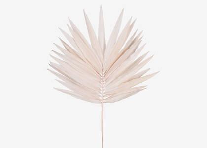 Tige de palmier large Zyla sel rose
