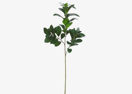 Tige de feuilles Maude